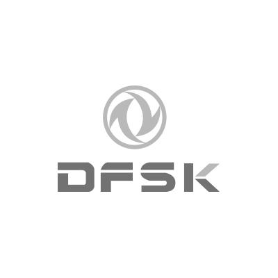 dfsk logo gris